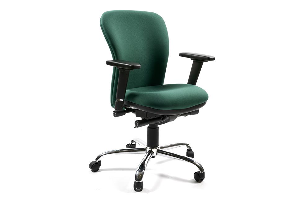 Executive Flexi Chair